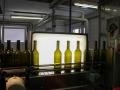 Weingut Kost Impressionen